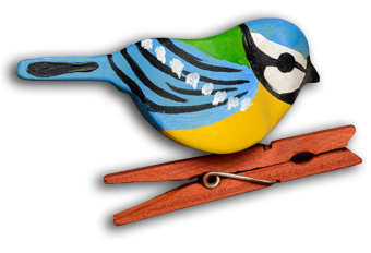 Ptáček mého syna – KAREL JE KING!