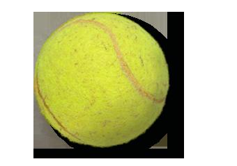 Tenisák – KAREL JE KING!
